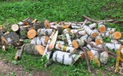 Бесплатные дрова: берёза, липа, осина, ель, дуб и сосна в Городском парке Красногорска и в ДГ «Сказочный».